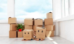 removalists-flemington